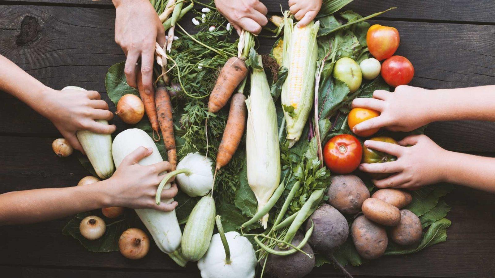 Sementi e piante per casa, giardino e frutta e verdura